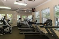 wp fitness